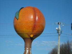 A peach in SC